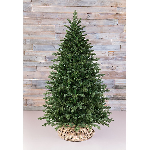 Triumph Tree ТРИУМФ ЕЛЬ ШЕРВУД ПРЕМИУМ 185СМ ЗЕЛЕНАЯ ель royal christmas sonora hook on tree 180 см 942180