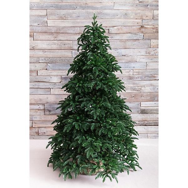Triumph Tree ТРИУМФ ЕЛЬ НОРМАНДИЯ 215 СМ ТЕМНО-ЗЕЛЕНАЯ ель royal christmas sonora hook on tree 180 см 942180