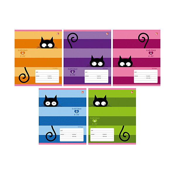 Любопытный кот (линия), 5 видовТетради<br>Характеристики:<br><br>• возраст: от 7 лет<br>• в наборе: 1 тетрадь<br>• формат: А5<br>• количество листов: 24<br>• обложка: мелованный картон<br>• внутренний блок: офсет, плотностью 60 г/м2, линейка, с полями<br>• крепление: скрепка<br>• дизайн обложки в ассортименте (5 видов)<br>• ВНИМАНИЕ! Данный артикул представлен в разных вариантах исполнения. К сожалению, заранее выбрать определенный вариант невозможно. При заказе нескольких тетрадей возможно получение одинаковых<br><br>Тетрадь в линейку с полями «Любопытный кот» предназначена для школьников. Отличная полиграфия и качественная бумага обеспечат высокое качество письма. Обложка из мелованного картона позволит сохранять тетрадь в аккуратном виде в течение всего периода использования.<br><br>Тетрадь «Любопытный кот» (линия), 5 видов можно купить в нашем интернет-магазине.<br>Ширина мм: 202; Глубина мм: 2; Высота мм: 163; Вес г: 67; Возраст от месяцев: 84; Возраст до месяцев: 2147483647; Пол: Унисекс; Возраст: Детский; SKU: 7373858;