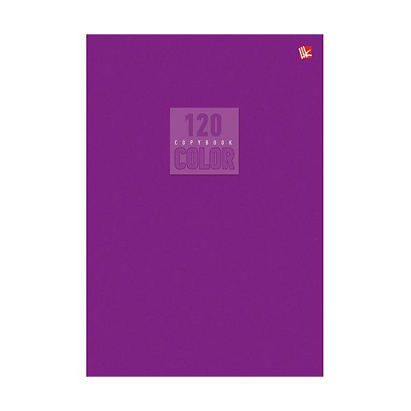 Unnika Land Стиль и цвет. Лиловый 120л., клетка unnika land дневник школьный цвет синий
