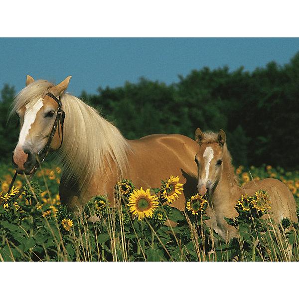 Ravensburger Пазл «Лошади в подсолнухах» XXL 200 шт стоимость