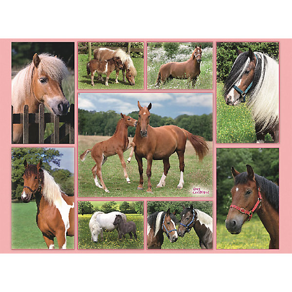 Купить Пазл «Галерея лошадей» XXL 300 шт, Ravensburger, Германия, Унисекс