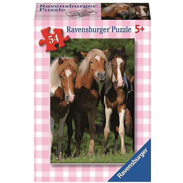 Минипазл Лошади, 54 элементаПазлы для малышей<br>Характеристики:<br><br>• тип игрушки: пазл;<br>• комплектация: 54 эл;<br>• размер картинки: 20х13 см;<br>• бренд: Ravensburger;<br>• упаковка: картон;<br>• размер: 9х3х6,5 см;<br>• вес: 71 гр;<br>• возраст: от 6 лет;<br>• материал: картон.<br><br>Минипазл «Лошади» 54 элемента представляет из себя увлекательную игру для детей от шести лет. Набор состоит из 54 деталей, выполненных из высококачественного картона. Из них предлагается собрать изображение трех бурых лошадей с красивыми большими гривами, которые пасуться на красивом поле с высокой травой.    <br><br>Головоломки Ravensburger всегда отличаются высоким качеством полиграфии, изготовлены из экологичного сырья. Рисунок имеет матовую поверхность без бликов, напечатан на ламинированной бумаге. Пазл сделан из плотного картона, с нанесением красочного рисунка и аккуратной вырубкой деталей с четкими гладкими краями, которые позволяют легко состыковывать элементы пазла между собой. <br><br>Сборка данного пазла сможет увлечь детей и поспособствовать развитию логического мышления и усидчивости.  Они также развивают образное мышление, наблюдательность и внимательность, а также мелкую моторику и координацию движений рук.<br><br>Минипазл «Лошади» 54 элемента можно купить в нашем интернет-магазине.<br>Ширина мм: 90; Глубина мм: 30; Высота мм: 65; Вес г: 71; Возраст от месяцев: -2147483648; Возраст до месяцев: 2147483647; Пол: Унисекс; Возраст: Детский; SKU: 7376948;