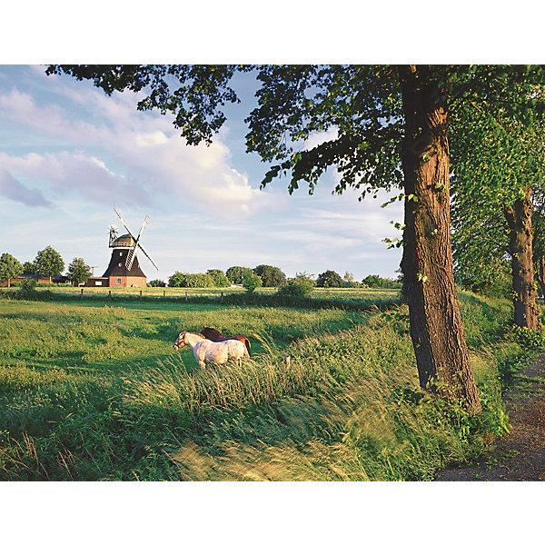 Ravensburger Пазл «Сельский пейзаж» 2000 шт
