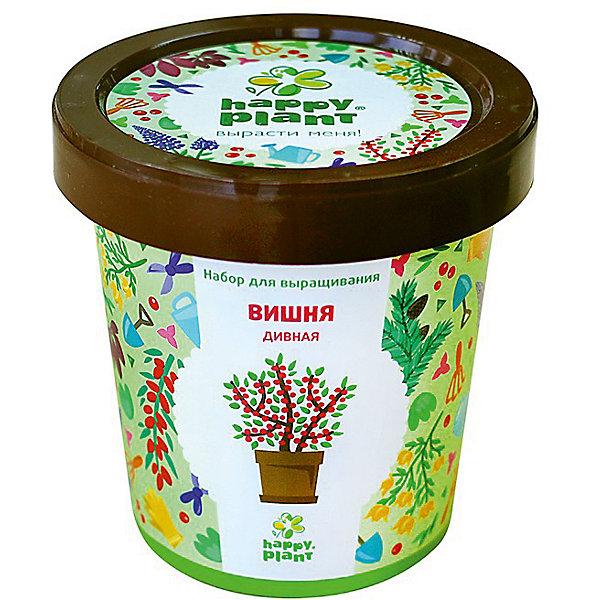 Набор для выращивания Вишня дивнаяВыращивание растений<br>Характеристики:<br><br>• возраст: от 3 лет;<br>• в комплекте: горшок, плодородный грунт, керамзит, семена, инструкция;<br>• объем: 500 мл;<br>• вес упаковки: 240 гр.;<br>• размер упаковки: 10х10х7 см;<br>• страна производитель: Россия.<br><br>Наборы для выращивания Happy Plant помогут освоить азы садоводства тем, кто совсем не знаком с этой деятельностью. А также станут отличным подарком для тех, кто любит цветущие растения.<br><br>В наборе есть все необходимое, чтобы посадить и вырастить вишню дивную. Сама упаковка станет горшочком, а крышка — подставкой. С помощью инструкции на русском языке посев будет простым и увлекательным занятием! Выращивание повышает чувство ответственности и улучшает настроение, особенно когда появляются первые результаты.<br><br>Набор для выращивания «Вишня дивная» можно купить в нашем интернет-магазине.<br>Ширина мм: 100; Глубина мм: 100; Высота мм: 70; Вес г: 240; Возраст от месяцев: 36; Возраст до месяцев: 2147483647; Пол: Унисекс; Возраст: Детский; SKU: 7378725;