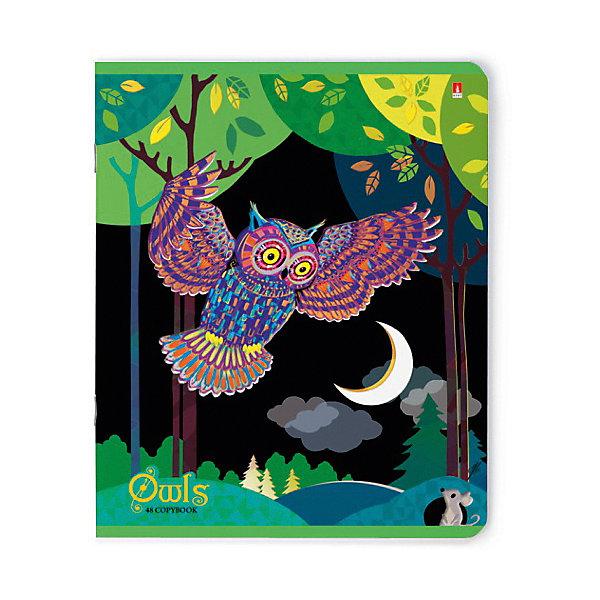 Альт Тетрадь Сказочные совы яркие 48 листов, клетка, 5 шт., рисунок в ассортименте альт тетрадь стрекозы фантазия 48 листов клетка 5 шт рисунок в ассортименте