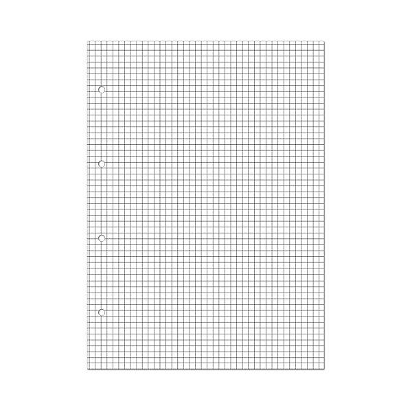 Альт Сменные блоки для тетрадей на кольцах А5, 80л.