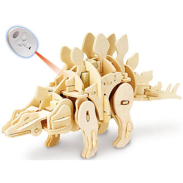 Деревянный конструктор Стегозавр , звуковой контроль, звуковые эффектыДеревянные модели<br>Характеристики товара:<br><br>• возраст: от 6 лет;<br>• материал:  дерево, пластик, металл;<br>• количество деталей: 88 шт.;<br>• в комплекте: детали конструктора, блок для батарей, датчик звука, моторчик, пульт ДУ, инструкция;<br>• батарейки в комплекте: не входят в комплект;<br>• тип батареек: 3 x AA / LR6 1. 5V (пальчиковые);<br>• размер упаковки: 32х6х23 см.;<br>• упаковка: картонная коробка;<br>• вес в упаковке: 1,1 кг.;<br>• бренд, страна бренда: D-LEX, Россия;<br>• страна-изготовитель: Китай.<br><br>Деревянный конструктор «Стегозавр» из серии «Динороботы» от D-Lex порадует детей и поможет создать модель древнего животного, которая послужит оригинальной игрушкой и дополнит интерьер детской комнаты.<br><br>В состав набора входят несколько деревянных листов фанеры с деталями, различные датчики, моторчики и пульт дистанционного управления. Шаг за шагом, следуя инструкции, собирайте вместе более чем 88 деревянных деталей (не забудьте правильно расположить инфракрасные, шумовые и световые датчики) без использования каких-либо инструментов, клея и шурупов!<br><br>Строительство требует терпения и немного усилий, но когда работа завершена, вы будете восхищены красивейшей моделью робота-динозавра, которым можно еще и управлять! <br>Он двигается! Ходит или бежит вперед! Издает реалистичные звуки динозавра! Реагирует на смену обстановки, громкий звук и свет!<br><br>Включает три режима игры:<br>• Демонстрационный -разумно реагирует на изменение окружающей обстановки!<br>• Искусственный интеллект! Динозавр сам двигается, рычит и бегает!<br>• Управление с помощью пульта.<br><br>Для пульта дистанционного управления вам понадобятся 2 батарейки «ААА». Для динозавра-робота Вам понадобятся 3 батарейки «АА». Батарейки в набор не входят.<br><br>Конструктор познакомит ребенка с азами электромеханики. Набор пробуждает у ребенка интерес к естественным наукам, учит терпению, вниманию и логическо