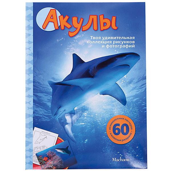 АкулыРаскраски для детей<br>Характеристики:<br><br>• ISBN: 978-5-389-04174-5;<br>• тип игрушки: книга;<br>• возраст: от 3 лет;<br>• вес: 352 гр;<br>• автор: Сэл Эмма;<br>• художник: Перна Джесс, Джастис Карли;<br>• количество страниц: 64 (мелованые);<br>• размер: 32х23х0,5 см;<br>• материал: бумага;<br>• издательство: Махаон.<br><br>Книга Махаон «Акулы» познакомит читателей с разными видами и породами животных, расскажет об их образе жизни, повадках и особенностях поведения. Каждую страничку этой книги можно превратить в настоящую картину! Попробуйте придумать для них интересное оформление, вставьте в рамочки, повесьте в своей комнате или подарите друзьям. Рисуйте, раскрашивайте и выполняйте разные творческие задания.<br>Для младшего школьного возраста.<br><br><br>Книгу «Акулы» от издательства Махаон можно купить в нашем интернет-магазине.<br>Ширина мм: 242; Глубина мм: 201; Высота мм: 12; Вес г: 360; Возраст от месяцев: 36; Возраст до месяцев: 72; Пол: Унисекс; Возраст: Детский; SKU: 7427833;