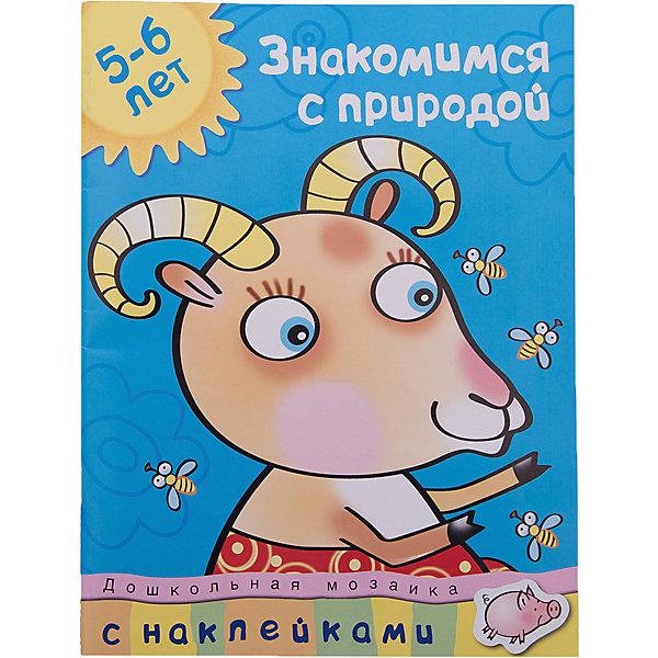 Махаон Знакомимся с природой (5-6 лет) махаон книга слон и моська с 6 лет