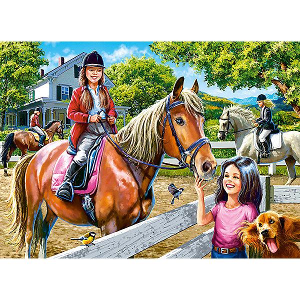 Купить Пазл Верховая езда, 300 деталей, Castor Land, Castorland, Польша, Унисекс