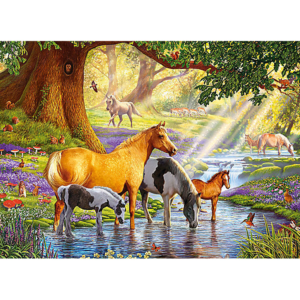 Castorland Пазл Лошади у реки, 300 деталей, Castor Land цена