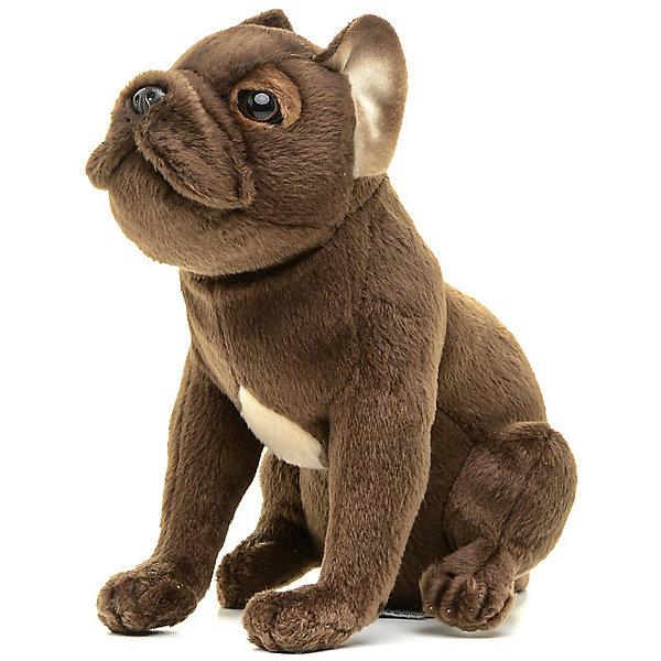 Купить Мягкая игрушка Hansa Щенок французского бульдога, 20 см, Филиппины, Унисекс