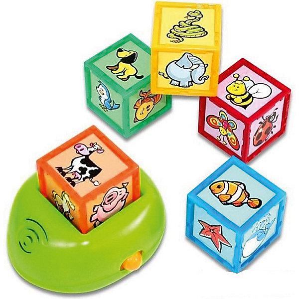 Интерактивная игрушка 1Toy Kidz Delight Кубики с животнымиИнтерактивные игрушки для малышей<br>Характеристики товара:<br><br>• возраст: от 1 года;<br>• комплект: 5 кубиков, подставка;<br>• размер упаковки: 25х20х8 см.;<br>• наличие батареек: входят в комплект;<br>• тип батареек: 3 x AAA / LR0.3 1.5V (мизинчиковые);<br>• состав: пластик, металл;<br>• упаковка: картонная коробка блистерного типа;<br>• вес в упаковке: 450 гр.;<br>• бренд, страна: 1 TOY, Россия;<br>• страна-производитель: Китай.<br><br>Игрушка обучающая «Интерактивные кубики. Животные» - позволят ребенку в игровой форме узнать о 30 различных животных, среди которых морские обитатели, насекомые, дикие животные, а также животные с фермы.<br><br>Ребенку необходимо лишь вставить один из 5 имеющихся кубиков в специальное углубление в подставке, а затем нажать на кубик, чтобы услышать название животного. Кроме того, набор предусматривает возможность закрепления полученных знаний. В таком режиме ребенку нужно будет найти кубик с изображением определенного животного.<br><br>Работает игрушка от батареек, которые входят в комплект. Изготовлена из пластика высокого качества, безвредного для детского здоровья.<br><br>Обучающие игрушки от бренда 1 TOY  нацелены на развитие мелкой моторики, образного мышления, усидчивости, любознательности и других полезных навыков.<br><br>Игрушку обучающую «Интерактивные кубики. Животные» (звук) от 1 TOY  можно купить в нашем интернет-магазине.<br>Ширина мм: 250; Глубина мм: 80; Высота мм: 200; Вес г: 450; Возраст от месяцев: 12; Возраст до месяцев: 2147483647; Пол: Унисекс; Возраст: Детский; SKU: 7464021;