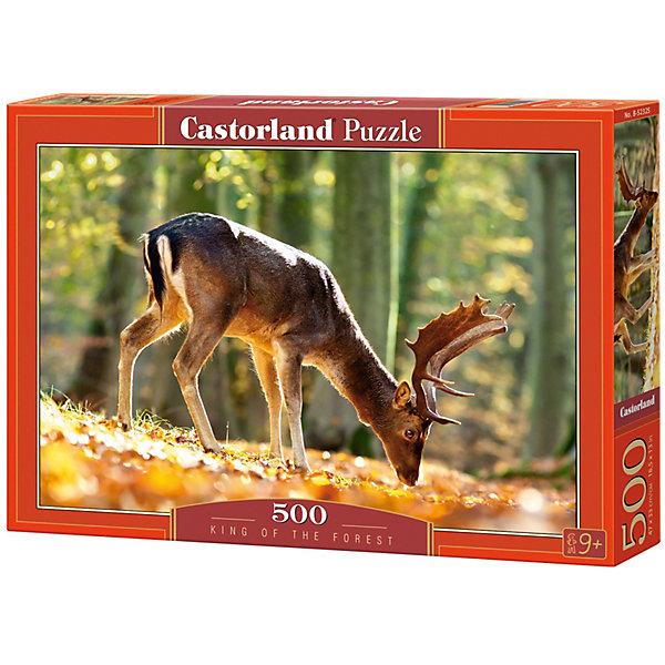 Castorland Пазл Castorland Король леса 500 деталей castorland пазл castorland пожарная машина 500 деталей