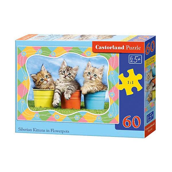 Пазл Castorland Три котенка 60 деталей MIDIПазлы для малышей<br>Характеристики товара:<br><br>• возраст: от 3 лет;<br>• количество деталей: 60 шт;<br>• материал: картон;<br>• размер упаковки: 17,5х13х3,7 см;<br>• размер картины: 32х23 см;<br>• вес упаковки: 150 гр.;<br>• страна производитель: Польша.<br><br>Пазл Castorland (Касторлэнд) Три котенка – это отличный способ увлекательно провести досуг, снять стресс и развить моторику.<br><br>Качество этих пазлов подтверждено миллионами любителей сборки пазлов. Пазлы Castorland собираются легко. Каждая деталь имеет индивидуальную форму и легко соединяется с другой, поэтому у Вас обязательно получится ожидаемый результат - картина собранная собственными руками.<br><br>Пазл Castorland (Касторлэнд) Три котенка  можно купить в нашем интернет-магазине.<br>Ширина мм: 180; Глубина мм: 130; Высота мм: 40; Вес г: 150; Возраст от месяцев: 36; Возраст до месяцев: 2147483647; Пол: Унисекс; Возраст: Детский; SKU: 7487361;