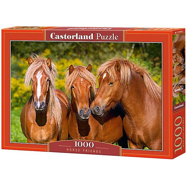 Castorland Пазл Castorland Лошади 1000 деталей castorland пазл цветы 1000 деталей castorland