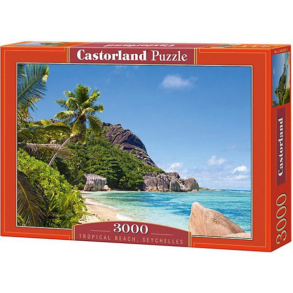 Castorland Пазл Castorland Пляж, Сейшелы 3000 деталей пазл ravensburger сейшелы 1500 элементов