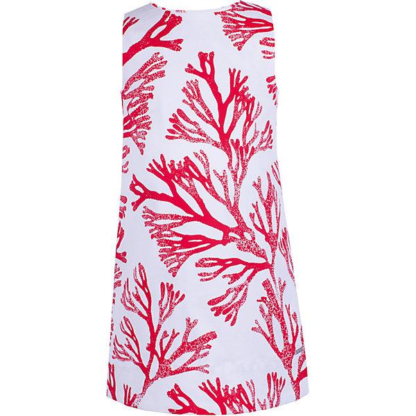 Платье Gulliver для девочкиОдежда<br>Характеристики товара:<br><br>• цвет: белый/красный;<br>• состав ткани: 98% хлопок, 2% эластан;<br>• без подкладки;<br>• застёжка: молния на спинке;<br>• платье без рукавов;<br>• длина: миди;<br>• трапециевидный силуэт;<br>• платье с рисунком;<br>• коллекция: Коралловый остров;<br>• страна бренда: Россия.<br><br>Платье без рукавов легкого трапециевидного силуэта. Платье смотрится потрясающе и, наверняка, понравится девочке, которая хочет быть в тренде! Выразительный растительный рисунок не позволит затеряться в толпе, сделав образ ребенка ярким и оригинальным. <br><br>Платье Gulliver (Гулливер) можно купить в нашем интернет-магазине.<br>Ширина мм: 236; Глубина мм: 16; Высота мм: 184; Вес г: 177; Цвет: белый; Возраст от месяцев: 24; Возраст до месяцев: 36; Пол: Женский; Возраст: Детский; Размер: 98,116,110,104; SKU: 7788981;