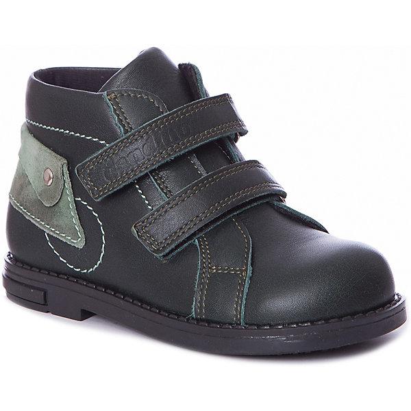 Dandino Ботинки Dandino для мальчика