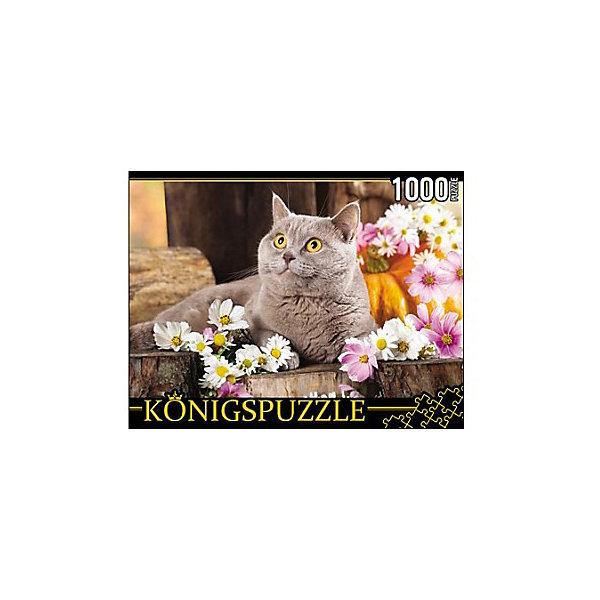 Купить Пазл Konigspuzzle Британский кот 1000 элементов, Россия, Унисекс