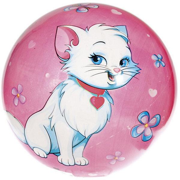 Мяч Dema-Stil Котята, 23 смМячи детские<br>Характеристики:<br><br>• тип игрушки: мяч;<br>• возраст: от 3 лет;<br>• материал: ПВХ;<br>• цвет:  розовый, белый, голубой;<br>• вес: 140 гр;<br>• размер: 23х23х23 см;<br>• бренд: Dema Stil.<br><br>Мяч Dema-Stil «Котята», 23 см  имеет гладкую и упругую поверхность. На нем изображен  белый улыбающийся котенок с медальоном на шее.Котенок сидит среди цветочков, над ним летают бабочки. Упругий резиновый мяч подходит для игр в помещении и на открытом воздухе. Материал, из которого изготовлен мяч, устойчив к солнечным лучам и соленой воде, поэтому его можно использовать для активных игр на воде и на суше в летнее время года. <br><br>Мяч Dema-Stil «Котята», 23 см можно купить в нашем интернет-магазине.<br>Ширина мм: 230; Глубина мм: 230; Высота мм: 230; Вес г: 140; Цвет: розовый/белый; Возраст от месяцев: 36; Возраст до месяцев: 84; Пол: Унисекс; Возраст: Детский; SKU: 7920708;