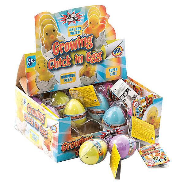 Яйцо растущее в воде HGL ЦыпленокИгровые наборы с фигурками<br>Характеристики:<br><br>• возраст: от 3 лет<br>• в наборе: яйцо с фигуркой цыпленка внутри<br>• материал: резина<br>• размер упаковки: 5х6х9 см.<br>• все: 56 гр.<br>• производитель: HGL<br><br>ВНИМАНИЕ! Данный артикул представлен в разных вариантах исполнения. К сожалению, заранее выбрать определенный вариант невозможно. При заказе нескольких наборов возможно получение одинаковых<br><br>Яйцо, растущее в воде с милым цыпленком внутри - игрушка, которая поможет детям почувствовать себя настоящими биологом.<br><br>Для проведения эксперимента яйцо надо опустить в емкость с водой на 1-2 дня. Постепенно скорлупа начнет трескаться, и из нее покажется цыпленок. Оставьте фигурку в воде еще на некоторое время, пока она не вырастет. С получившейся фигуркой можно играть. Если спустя какое-то время фигурка немного уменьшится, её можно снова поместить в воду.<br><br>Яйцо, растущее в воде с цыпленком внутри - это игрушка-сюрприз, ребенку будет интересно узнать, какой цыпленок прячется за скорлупой.<br><br>Яйцо растущее в воде HGL Цыпленок можно купить в нашем интернет-магазине.<br>Ширина мм: 50; Глубина мм: 60; Высота мм: 90; Вес г: 56; Цвет: разноцветный; Возраст от месяцев: 36; Возраст до месяцев: 2147483647; Пол: Унисекс; Возраст: Детский; SKU: 7923104;