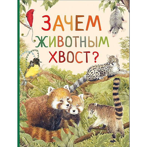 Удивительный мир животных Зачем животным хвост?Ознакомление с окружающим миром<br>Характеристики товара:<br><br>• ISBN:9785353087229;<br>• возраст: от 3 лет;<br>• иллюстрации: цветные;<br>• обложка: твердая;<br>• бумага: офсет;<br>• количество страниц: 32 стр.;<br>• формат:28х20х1 см.;<br>• вес: 310 гр.;<br>• автор: Ренне.;<br>• издательство:  Росмэн;<br>• страна: Россия.<br><br>Книга «Зачем животным хвост?» из серии «Удивительный мир животных» в увлекательной форме расскажет о том, сколько полезных и удивительных применений у хвоста. Ведь неспроста он есть у многих животных!<br>Зачем птицы распушают хвост, волки поднимают его торчком, а бобры лупят хвостом по воде? Хвост используют по-разному: одним животным он нужен для защиты, другим для охоты, третьим — для передвижения. С помощью хвоста можно «поговорить», согреться в зимнюю стужу и даже припасти в нем жирок.<br> <br>Красочные иллюстрации автора, простые милые сюжеты, уютная атмосфера помогут расширить словарный запас и кругозор, а также привить интерес к чтению.<br><br>Книгу «Зачем животным хвост?», 32 стр., Изд. Росмэн, можно купить в нашем интернет-магазине.<br>Ширина мм: 283; Глубина мм: 208; Высота мм: 7; Вес г: 310; Возраст от месяцев: 36; Возраст до месяцев: 84; Пол: Унисекс; Возраст: Детский; SKU: 7931752;