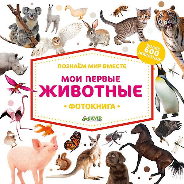 Фотокнига найди и покажи Познаем мир вместе Мои первые животныеВиммельбухи<br>Характеристики:<br><br>• возраст: от 0 лет;<br>• материал: бумага;<br>• ISBN:  978-5-00115-223-1; <br>• количество страниц: 22;<br>• вес: 776 гр;<br>• размер: 27,7х27,7х2 см;<br>• страна: Россия;<br>• издательство: Clever.<br><br>Книга «Познаем мир вместе. Мои первые животные. Фотокнига» расскажет малышу о животных, птицах, обитателях морей и океанов, познакомит с оттенками цветов и поможет освоить первый счет - и все это на базе настоящих фотографий. Отдельные развороты книжки знакомят с жителями разных континентов, лесов, пустынь, от огромных до самых маленьких, например насекомых. Они помогут малышам развивать воображение, творческие способности, расширять кругозор и легко освоить первый счет.<br><br>Знакомство со свойствами предмета - формой, цветом, размером, положением в пространстве - ключевой этап в развитии ребенка. Важно не пропустить момент, когда малыш начинает познавать предметный мир с помощью всех органов чувств.<br><br>Книгу «Познаем мир вместе. Мои первые животные. Фотокнига» можно купить в нашем интернет-магазине.<br>Ширина мм: 270; Глубина мм: 270; Высота мм: 20; Вес г: 759; Возраст от месяцев: 0; Возраст до месяцев: 36; Пол: Унисекс; Возраст: Детский; SKU: 7940178;