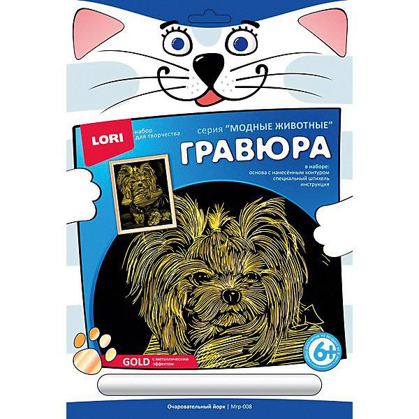 LORI Гравюра с эффектом золота LORI Модные животные Очаровательный йорк, большая видеорегистратор qstar le5