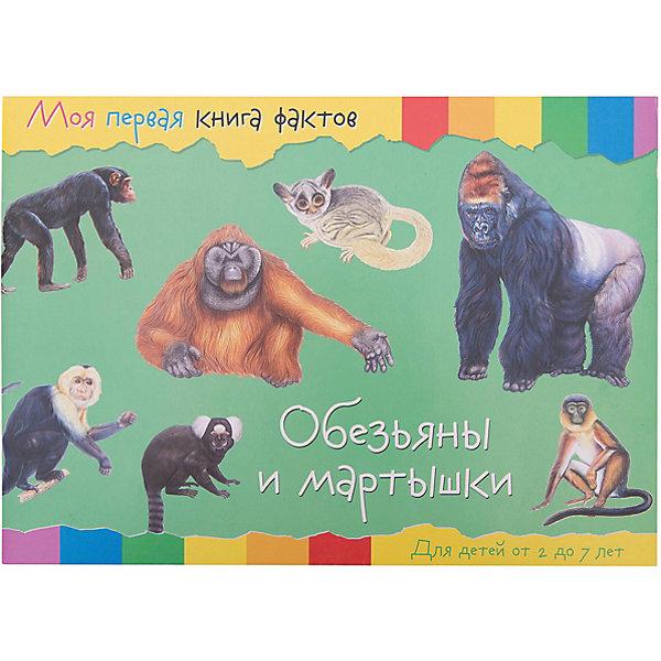ND Play Энциклопедия Моя первая книга фактов Обезьяны nd play энциклопедия моя первая книга фактов обезьяны