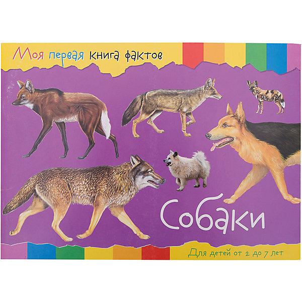 ND Play Энциклопедия Моя первая книга фактов Собаки развивающие книжки росмэн книга собаки и щенки 100 фактов