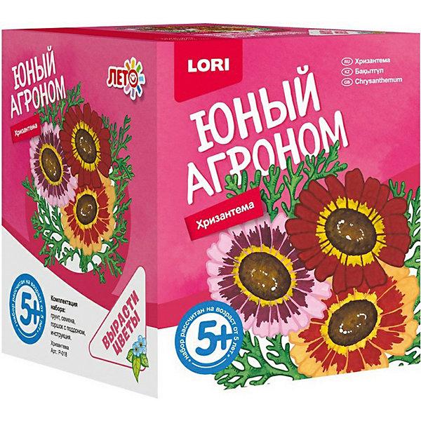 Набор для выращивания Lori Юный агроном ХризантемаВыращивание растений<br>Характеристики товара:<br><br>• возраст: от 5 лет;<br>• размер упаковки: 8х10х8 см;<br>• вес упаковки: 355 гр.;<br>• страна бренда: Россия.<br><br>Набор для выращивания растений - не только оригинальный подарок, но и яркий способ, воспитать в ребёнке ответственность. Благодаря данному набору ребёнок может наблюдать за ростом и развитием растений и самостоятельно ухаживать за ними.<br><br>Юный агроном Lori Хризантема можно купить в нашем интернет-магазине.<br>Ширина мм: 118; Глубина мм: 99; Высота мм: 98; Вес г: 355; Цвет: разноцветный; Возраст от месяцев: 60; Возраст до месяцев: 2147483647; Пол: Унисекс; Возраст: Детский; SKU: 7985322;