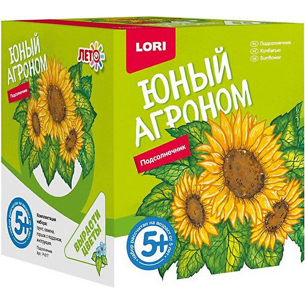 Набор для выращивания Lori Юный агроном ПодсолнечникВыращивание растений<br>Характеристики товара:<br><br>• возраст: от 5 лет;<br>• размер упаковки: 8х10х8 см;<br>• вес упаковки: 355 гр.;<br>• страна бренда: Россия.<br><br>Набор для выращивания растений - не только оригинальный подарок, но и яркий способ, воспитать в ребёнке ответственность. Благодаря данному набору ребёнок может наблюдать за ростом и развитием растений и самостоятельно ухаживать за ними.<br><br>Юный агроном Lori Подсолнечник можно купить в нашем интернет-магазине.<br>Ширина мм: 118; Глубина мм: 99; Высота мм: 98; Вес г: 355; Цвет: orange/gelb; Возраст от месяцев: 60; Возраст до месяцев: 2147483647; Пол: Унисекс; Возраст: Детский; SKU: 7985332;