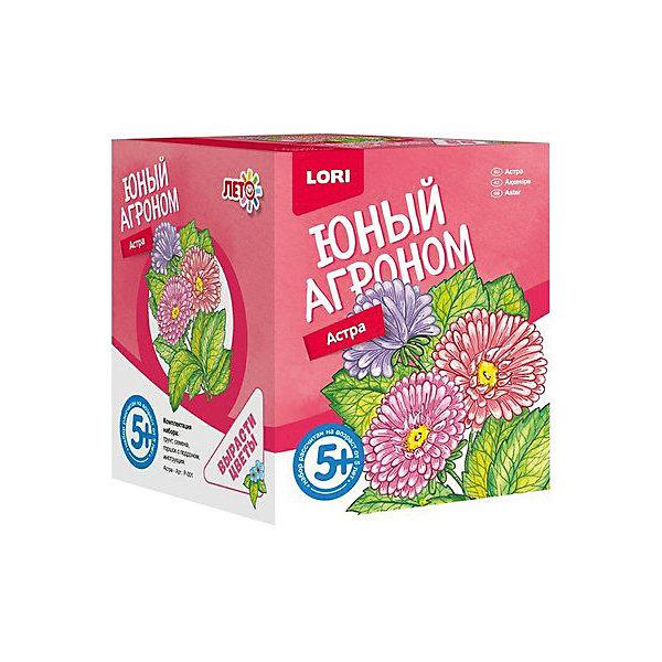 Набор для выращивания Lori Юный агроном АстраВыращивание растений<br>Характеристики товара:<br><br>• возраст: от 5 лет;<br>• размер упаковки: 8х10х8 см;<br>• вес упаковки: 355 гр.;<br>• страна бренда: Россия.<br><br>Набор для выращивания растений - не только оригинальный подарок, но и яркий способ, воспитать в ребёнке ответственность. Благодаря данному набору ребёнок может наблюдать за ростом и развитием растений и самостоятельно ухаживать за ними.<br><br>Юный агроном Lori Астра можно купить в нашем интернет-магазине.<br>Ширина мм: 118; Глубина мм: 99; Высота мм: 98; Вес г: 355; Цвет: разноцветный; Возраст от месяцев: 60; Возраст до месяцев: 2147483647; Пол: Унисекс; Возраст: Детский; SKU: 7985340;