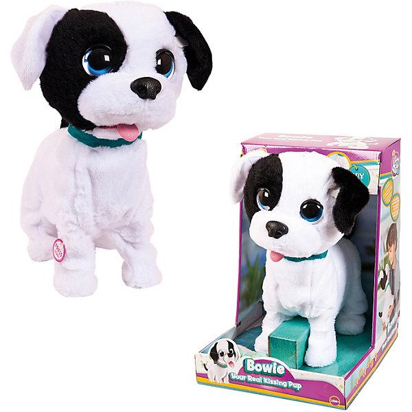 IMC Toys Интерактивный щенок Club Petz со звуковыми эффектами интерактивная игрушка imc toys хомяк bambam интерактивный мягконабивной со звуковыми эффектами 95090