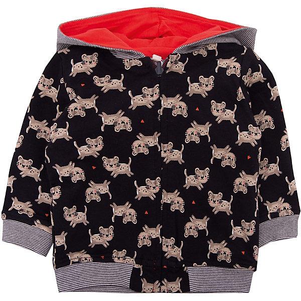 Кардиган Catimini для мальчикаТолстовки, свитера, кардиганы<br>Характеристики товара:<br><br>• цвет: черный<br>• состав ткани: 100% хлопок<br>• сезон: демисезон<br>• особенности модели: с капюшоном<br>• застежка: молния<br>• длинные рукава<br>• страна бренда: Франция<br><br>Кардиган для ребенка отличается наличием молнии: так его гораздо легче снимать и надевать. Этот кардиган для детей - одновременно модный и практичный. Детский кардиган сделан из хлопкового материала, который не вызывает аллергии и прост в уходе. Такой кардиган для ребенка разработан дизайнерами французского бренда Catimini, который выпускает стильную и качественную детскую одежду. <br><br>Кардиган Catimini (Катимини) для мальчика можно купить в нашем интернет-магазине.<br>Ширина мм: 190; Глубина мм: 74; Высота мм: 229; Вес г: 236; Цвет: черный; Возраст от месяцев: 6; Возраст до месяцев: 9; Пол: Мужской; Возраст: Детский; Размер: 74,71,68,98,86,80; SKU: 8273897;