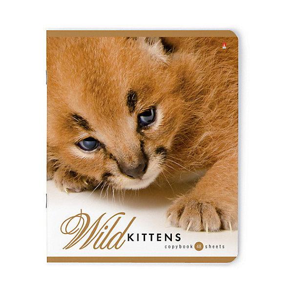 цена Альт Тетрадь Альт Дикие котята 48 листов, 5 шт., клетка онлайн в 2017 году