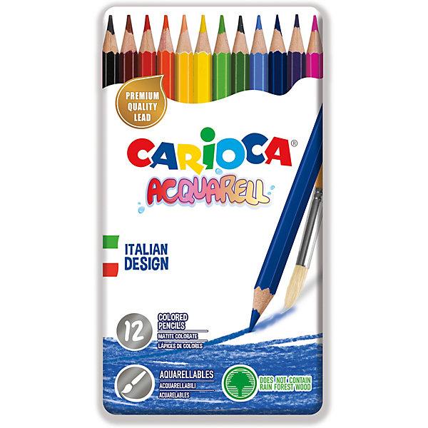 Carioca Набор цветных карандашей Carioca Acquarell, 12 цветов bic набор цветных карандашей aquacouleur 12 цветов