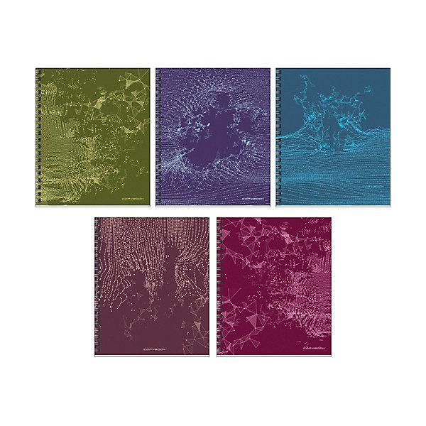 Канц-Эксмо Комплект тетрадей Канц-Эксмо Радиоволна, 5 шт., клетка канц эксмо записная книжка вокруг света очарование праги в клетку 64 листа