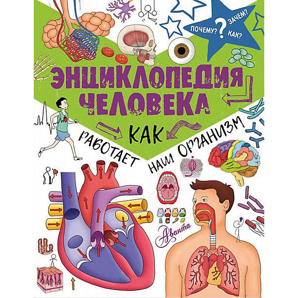 Издательство АСТ Энциклопедия человека Как работает наш организм томас канаван тело человека энциклопедия для маленьких почемучек