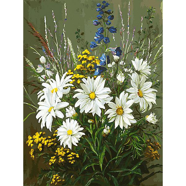 Белоснежка Картина по номерам «Полевые ромашки», 30x40 см