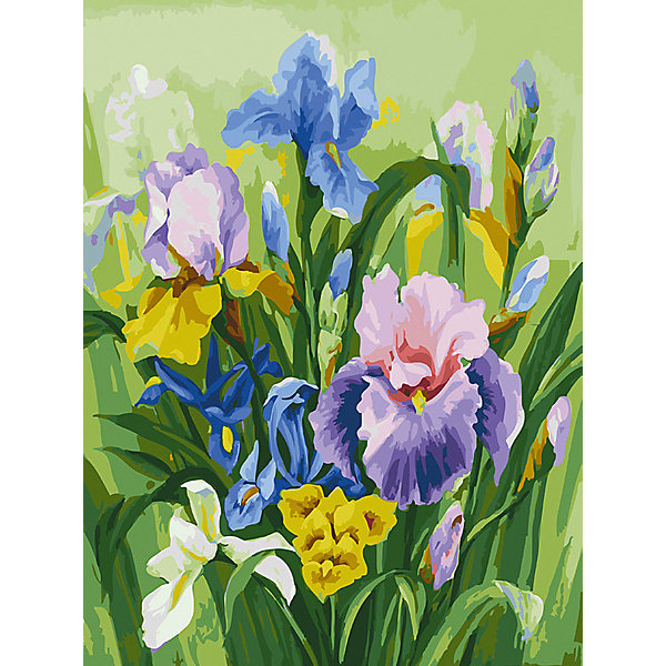 Купить Картина по номерам Белоснежка «Нежные ирисы», 30x40 см, Китай, Унисекс