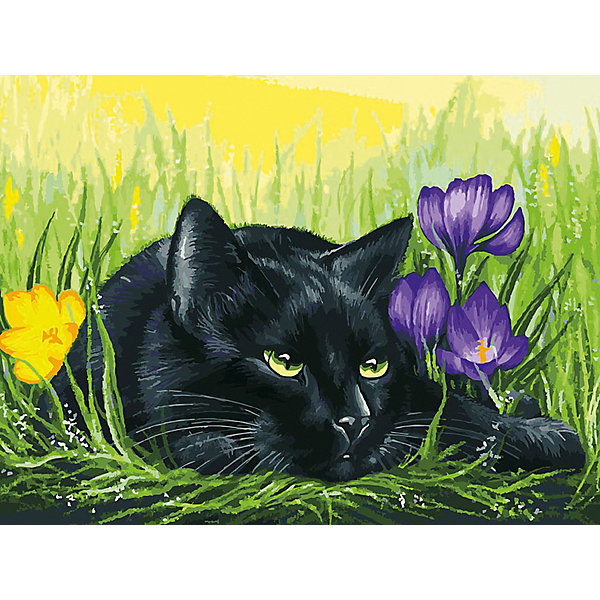 Купить Картина по номерам Белоснежка «Кот и крокусы», 30x40 см, Китай, Унисекс