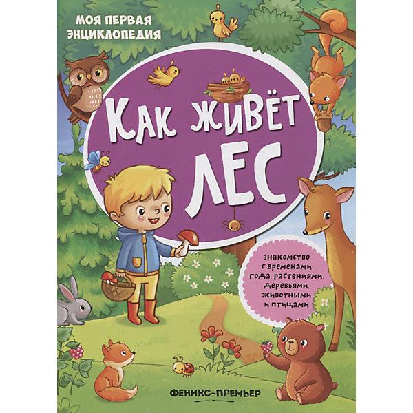 Купить Как живет лес: книжка с наклейками, Fenix, Россия, Унисекс