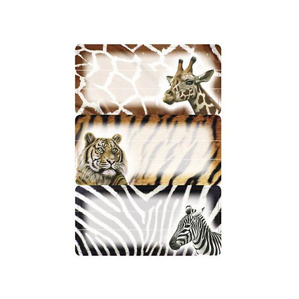 Набор наклеек для тетрадей Herma Vario АфрикаТетради<br>Характеристики:<br><br>• возраст: от 3 лет<br>• в наборе: 3 листа 9 наклеек<br>• размер: 7,6х3,5 см.<br>• материал: бумага<br><br>Наклейки для подписи тетрадей Herma «Vario» с изображением африканских животных создадут радостное настроение и придадут тетрадям неповторимый дизайн.<br><br>Яркие картинки, украшающие обложки тетрадей, будут предметом гордости маленького ученика. Наклейки станут палочкой-выручалочкой, если тетрадь подписана неверно.<br><br>В тетрадях, украшенных этими наклейками, приятно будет делать уроки, а любой скучный дневник превратиться в яркую копилку хороших оценок.<br><br>Набор наклеек для тетрадей Herma Vario Африка можно купить в нашем интернет-магазине.<br>Ширина мм: 160; Глубина мм: 90; Высота мм: 2; Вес г: 10; Цвет: разноцветный; Возраст от месяцев: 36; Возраст до месяцев: 2147483647; Пол: Унисекс; Возраст: Детский; SKU: 8362652;