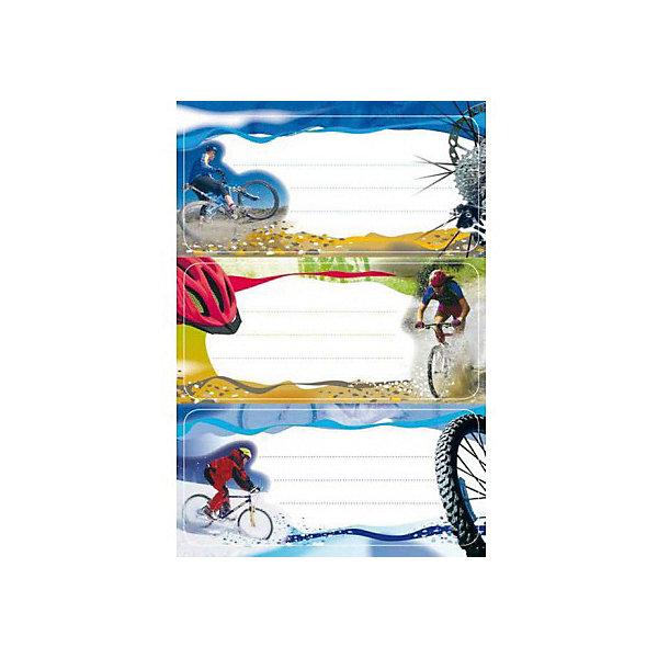 Набор наклеек для тетрадей Herma Vario ВелоспортТетради<br>Характеристики:<br><br>• возраст: от 3 лет<br>• в наборе: 3 листа 9 наклеек<br>• размер: 7,6х3,5 см.<br>• материал: бумага<br><br>Наклейки для подписи тетрадей Herma «Vario» Велоспорт создадут радостное настроение и придадут тетрадям неповторимый дизайн.<br><br>Яркие картинки, украшающие обложки тетрадей, будут предметом гордости маленького ученика. Наклейки станут палочкой-выручалочкой, если тетрадь подписана неверно.<br><br>В тетрадях, украшенных этими наклейками, приятно будет делать уроки, а любой скучный дневник превратиться в яркую копилку хороших оценок.<br><br>Набор наклеек для тетрадей Herma Vario Велоспорт можно купить в нашем интернет-магазине.<br>Ширина мм: 160; Глубина мм: 90; Высота мм: 2; Вес г: 10; Цвет: разноцветный; Возраст от месяцев: 36; Возраст до месяцев: 2147483647; Пол: Унисекс; Возраст: Детский; SKU: 8362735;