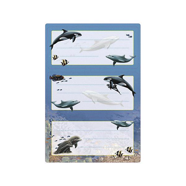 Набор наклеек для тетрадей Herma Vario ДельфиныТетради<br>Характеристики:<br><br>• возраст: от 3 лет<br>• в наборе: 2 листа 6 наклеек<br>• размер: 7,6х3,5 см.<br>• материал: бумага<br>• оформление: глиттер<br><br>Наклейки для подписи тетрадей Herma «Vario» с изображением дельфинов создадут радостное настроение и придадут тетрадям неповторимый дизайн. Рисунок покрыт блёстками, что делает его удивительно красивым.<br><br>Яркие картинки, украшающие обложки тетрадей, будут предметом гордости маленького ученика. Наклейки станут палочкой-выручалочкой, если тетрадь подписана неверно.<br><br>В тетрадях, украшенных этими наклейками, приятно будет делать уроки, а любой скучный дневник превратиться в яркую копилку хороших оценок.<br><br>Набор наклеек для тетрадей Herma Vario Дельфины можно купить в нашем интернет-магазине.<br>Ширина мм: 160; Глубина мм: 90; Высота мм: 2; Вес г: 10; Цвет: разноцветный; Возраст от месяцев: 36; Возраст до месяцев: 2147483647; Пол: Унисекс; Возраст: Детский; SKU: 8362898;