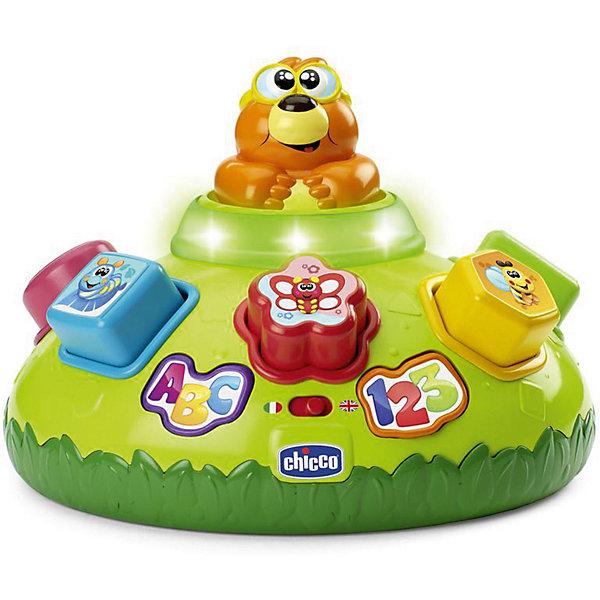 CHICCO Интерактивная игрушка для малышей Chicco Крот