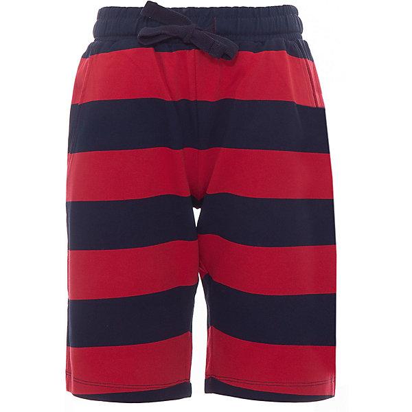Original Marines Шорты Original Marines для мальчика трусы шорты original bs красный xs